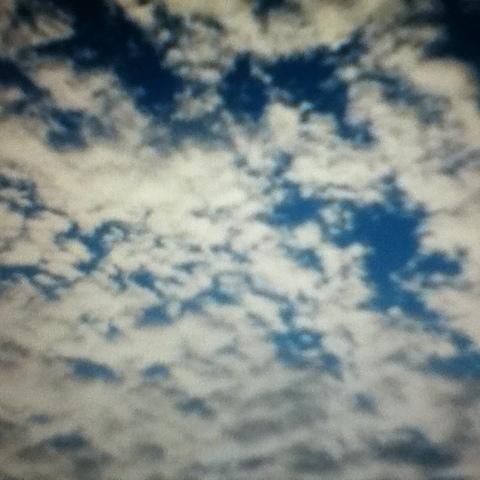 20120316-065626.jpg